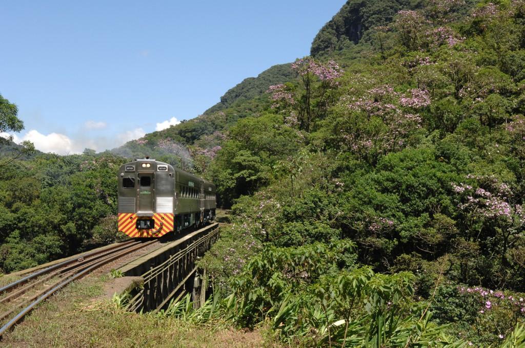 Trem de Luxo no Paraná (Divulgação)