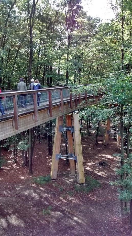 Altura maior da passarela chega a 23 metros de altura