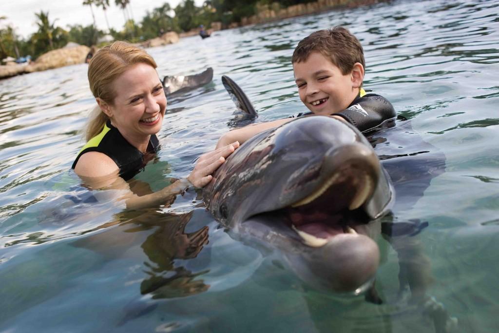 Mãe  e filho nadam com golfinho no Discovery Cove -  Foto: Divulgação