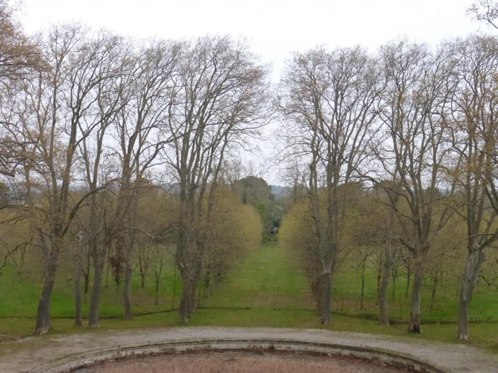 A maior parte do jardim do castelo, que carece de uma manutenção melhor